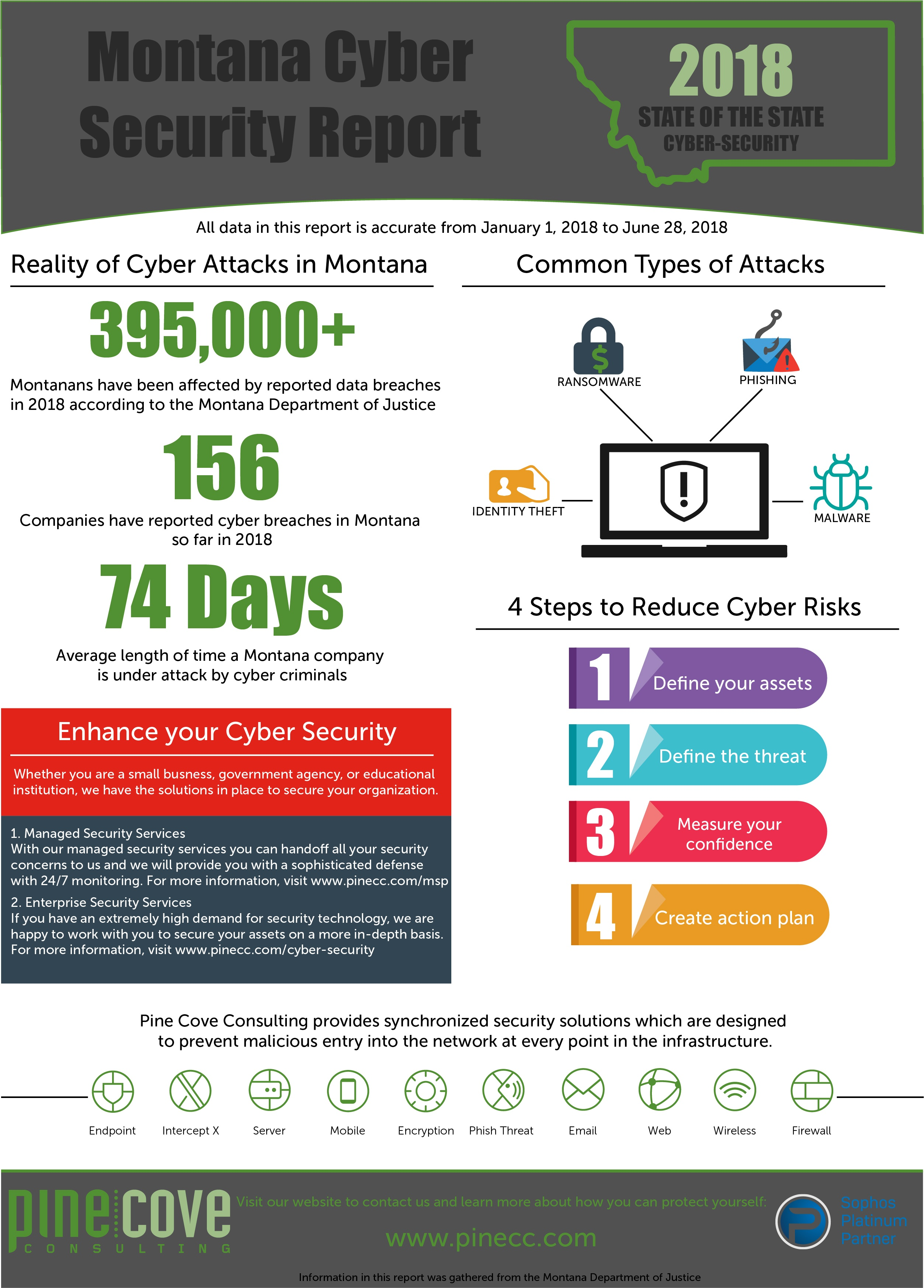 Montana Cyber Security Report